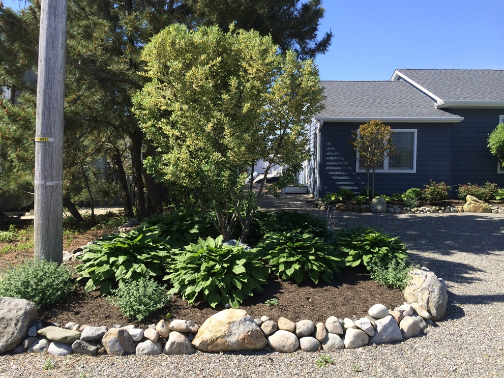 beach landscaping, Beach Landscaping – How to Maintain it Through Cold New Jersey Winters