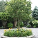 Landscaping in Manahawkin, 4 Steps to End of Summer Landscaping in Manahawkin NJ